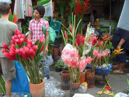Blumen auf dem Chatuchak-Markt - Chatuchak Weekend Market