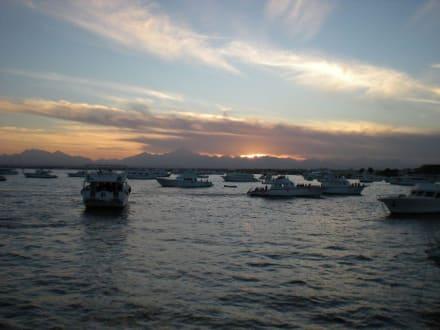Sonnenuntergang über Hurghada - Ausflug nach El Gouna