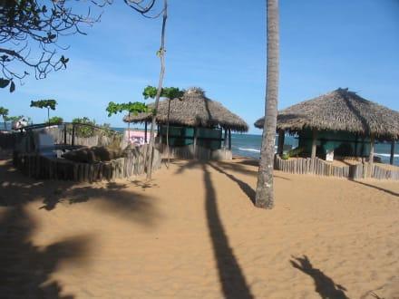 Zooanlage - Meeresschildkrötenstation Projeto Tamar