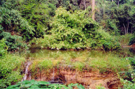 Kaeng Krachan - Kaeng Krachan - Nationalpark