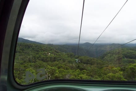 Skyrail Rainforest Cableway - Skyrail Rainforest Cableway