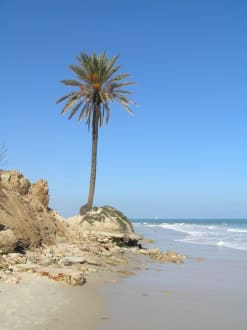 Strand bei Sousse - Strand Sousse