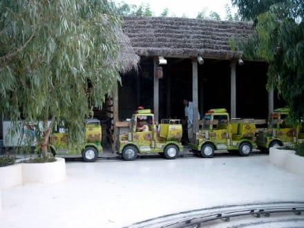 Kraftwagen-Bereich - Carthageland