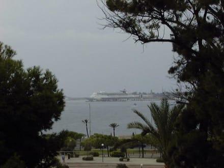 Blick aufs Meer Palma/Mallorca - Strandpromenade Playa/Platja de Palma