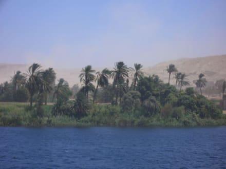 Sandsturm am Nil - Nil