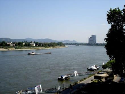 Blick über den Rhein - Alter Zoll