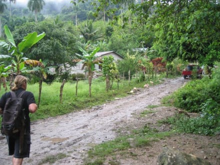 Auf dem Weg in den Dschungel - Extra Tours