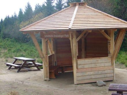 Schutzhütte Dreieckiger Pfahl - Wanderung Brocken