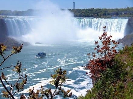 Horseshoe Fall, Niagara Falls - Niagarafälle / Horseshoe Falls