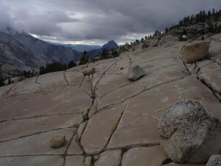 Naturreservat/Zoo - Yosemite Nationalpark