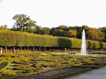 Schlosspark - Schloss Augustusburg