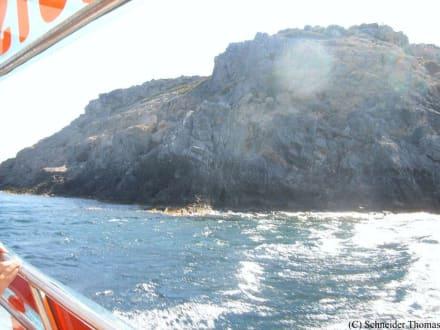 Fahrt mit dem Glasbodenboot - Bootstour Faliraki