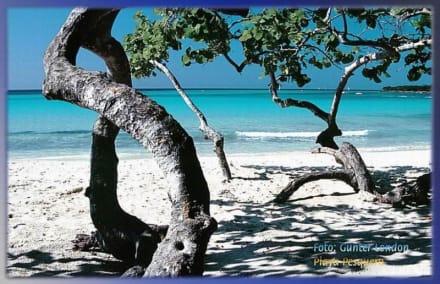 Playa Pesquero - Die Stille des  Morgens - Strand Pesquero