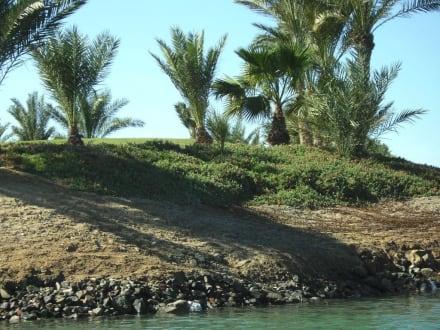 Schattenspiel - Ausflug nach El Gouna