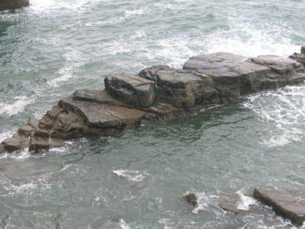 Church Cove - Lizard Point