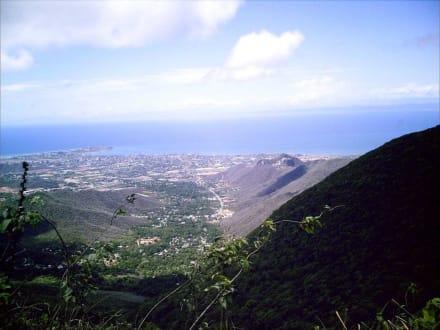 Aussicht vom Berg  Nationalpark Cerro El Copey - Nationalpark Cerro El Copey