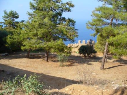 Auf der Burg 2. - Burg von Alanya  (Ic Kale)