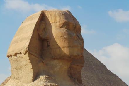 Zum Greifen nah - Tagesausflug nach Kairo