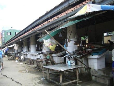 der Fischmarkt - Fischmarkt
