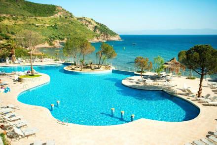 Main Pool -