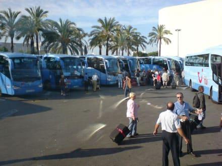 TUI Trafer Flughafen > Hotel - Flughafen Palma de Mallorca/Son Sant Joan (PMI)