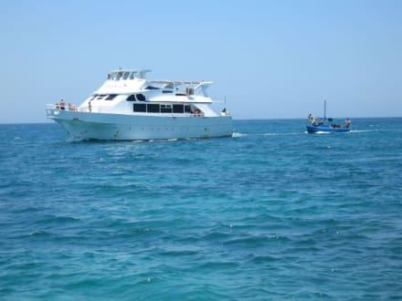 Fremdes Auflugsboot von Weitem - Pro Tours