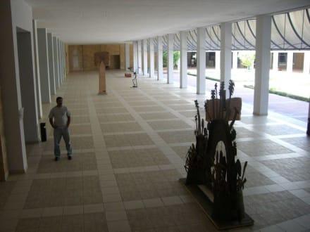 Museo de la Art - Museo de la Art