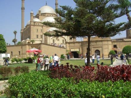 Moschee - Alabaster-Moschee / Mohammed Ali Moschee