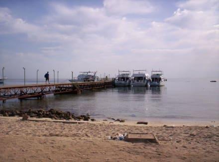 Utopia Boote - Fugamie Bucht