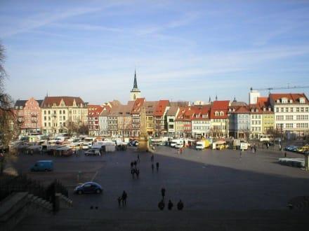 Blick vom Dom - Stadtführung Erfurt