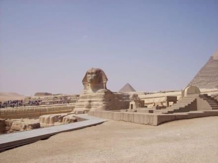Geheimnisvolle Sphinx - Pyramiden von Gizeh