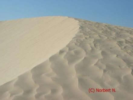 Düne in der Sahara - Sahara