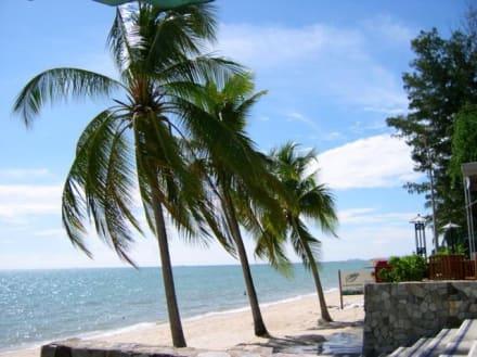 Wong Amat - Strandszene - Wong Amat Beach