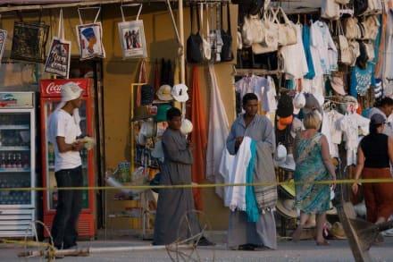 Der Weg zurück zum Bus - Tempel der Hatschepsut