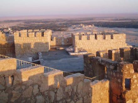 Zitadelle beim Sonnenuntergang - Ruine Palmyra