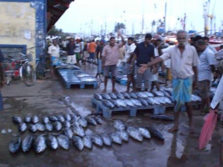 Fischmarkt - Bazaar
