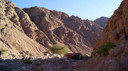 Sonstiges Landschaftmotiv - White Canyon