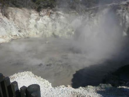 Rotorua - Geysir in Rotorua