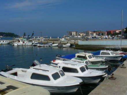 Boote im Hafen von Porec - Hafen Porec