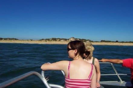 Los geht`s - Delfin Tour Bunbury