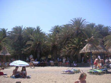 Palmenstrand - einfach traumhaft - Strand Vái