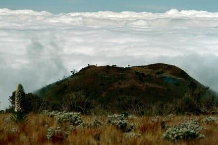Aufstieg zum Kilimanjaro - Kilimanjarobesteigung