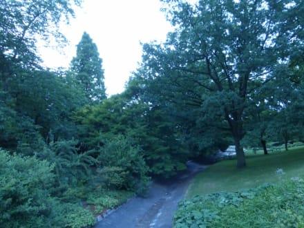 Spaziergang durch den Park Planten un Blomen - Parkanlage Planten un Blomen
