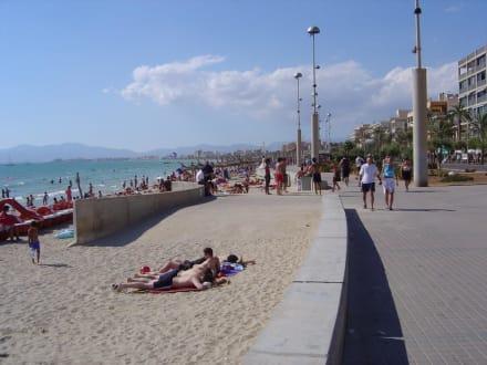 Ausflug zum Ballermann - Strand Playa/Platja de Palma