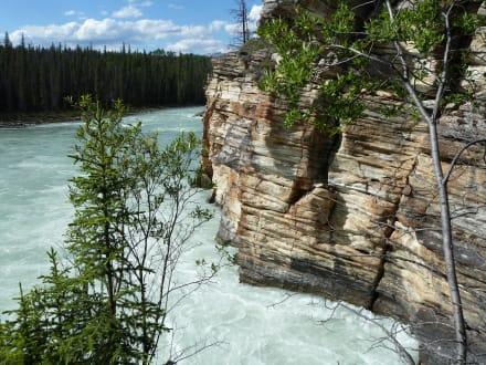 Athabasca Falls - Athabasca Falls