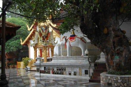 Religious sites (churches, temples, etc.) - Wat Phrathat Doi Suthep Temple