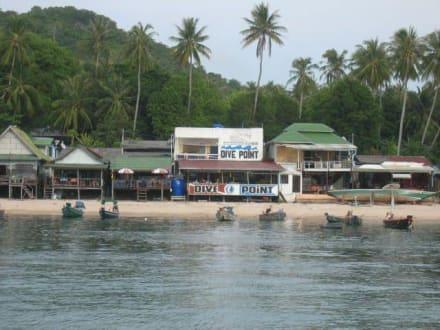 Die Tauchschule - Tauchbasis Dive Point Koh Tao