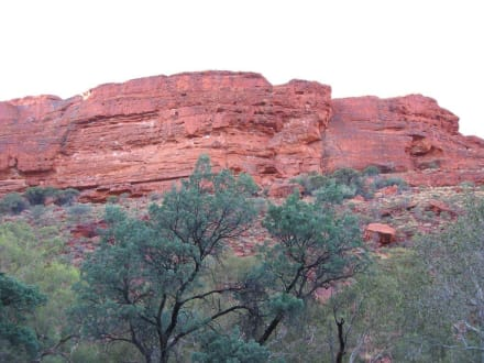 Morgenstunden am Kings Canyon - Kings Canyon