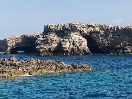 Hafenrundfahrt Valletta - Hafenrundfahrt Valletta