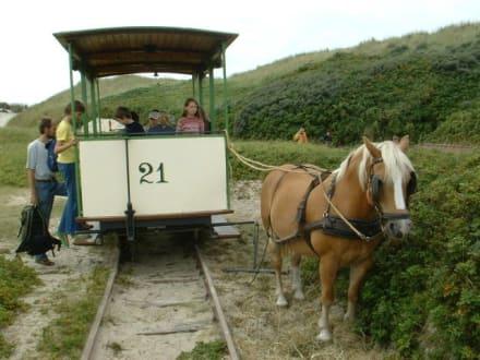 Pferdebahn - Museumspferdebahn